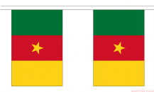 CAMEROON BUNTING - 3 METRES 10 FLAGS